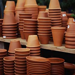 Tip Of The Day Cleaning Terra Cotta Pots