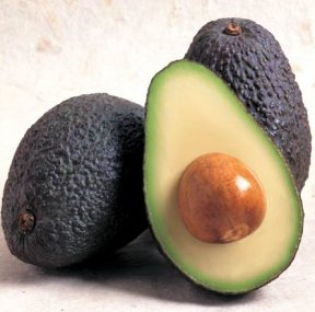 avocadophoto.jpg