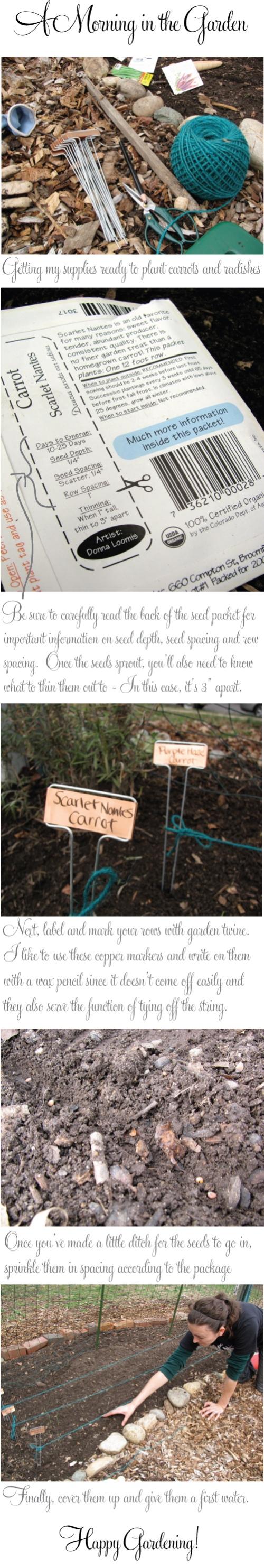 sarah-meyer-walsh-garden